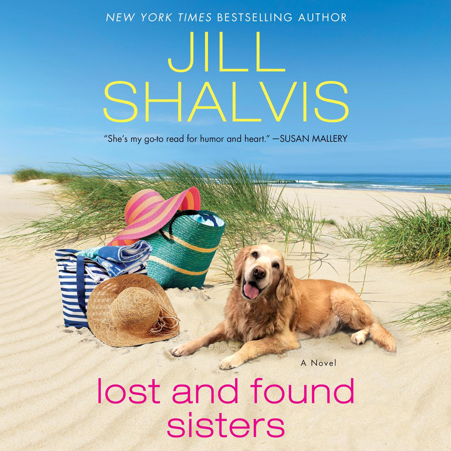Printable Lost and Found Sisters Audiobook Cover Art