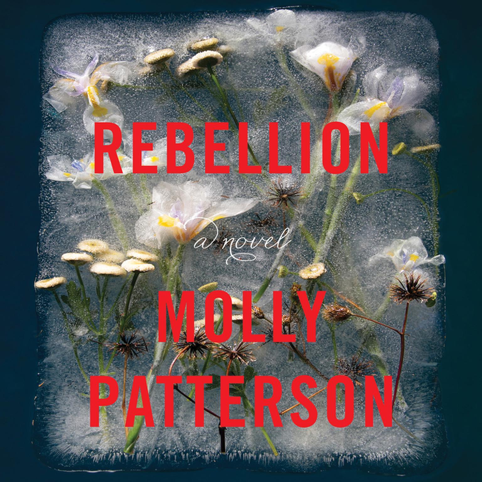 Printable Rebellion: A Novel Audiobook Cover Art