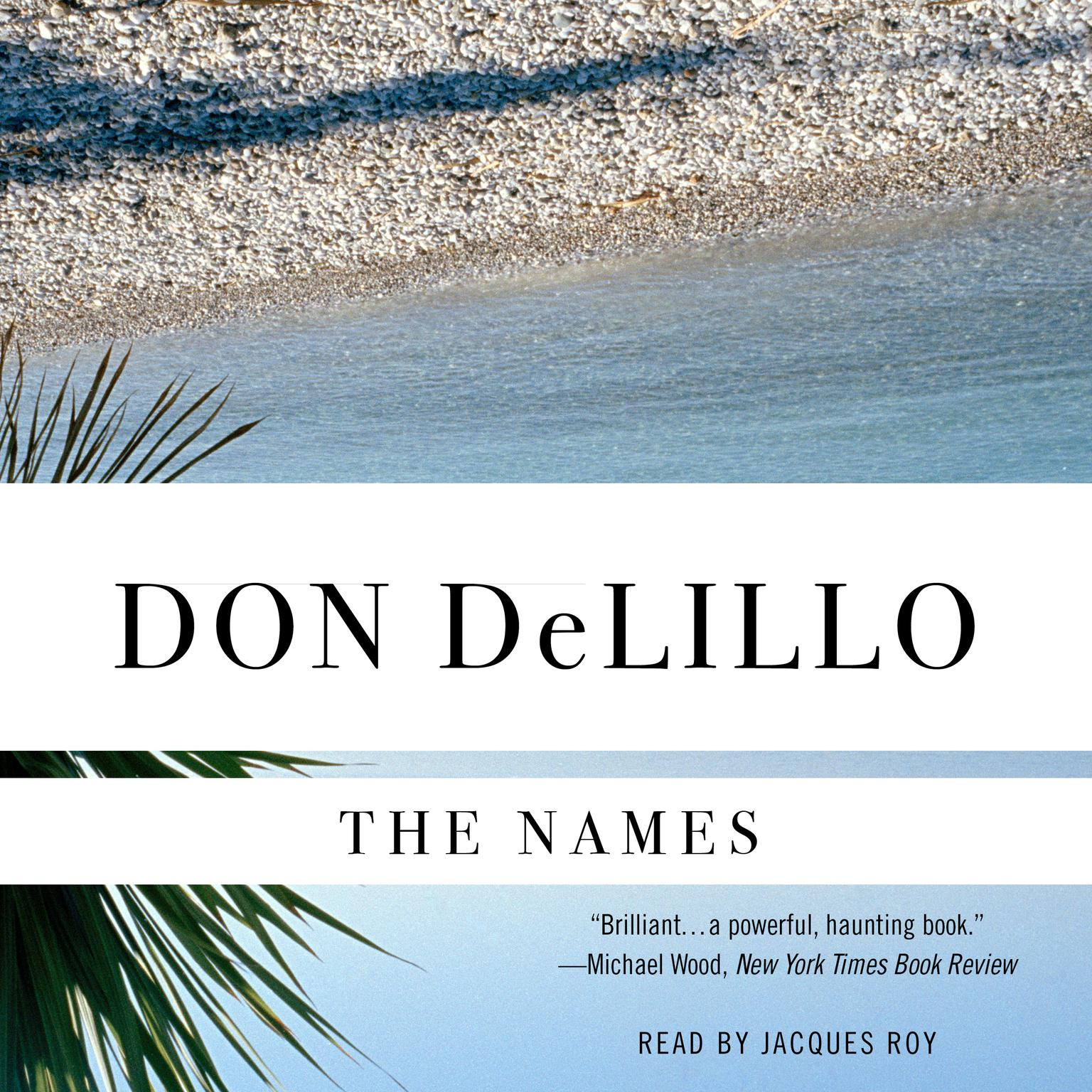 Printable The Names Audiobook Cover Art