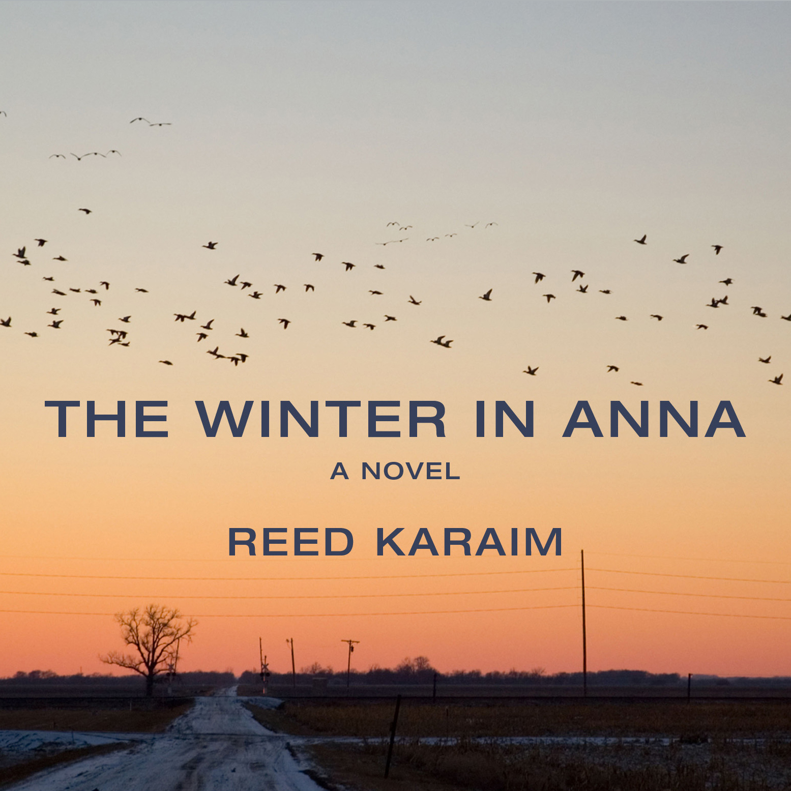 Printable The Winter in Anna: A Novel Audiobook Cover Art