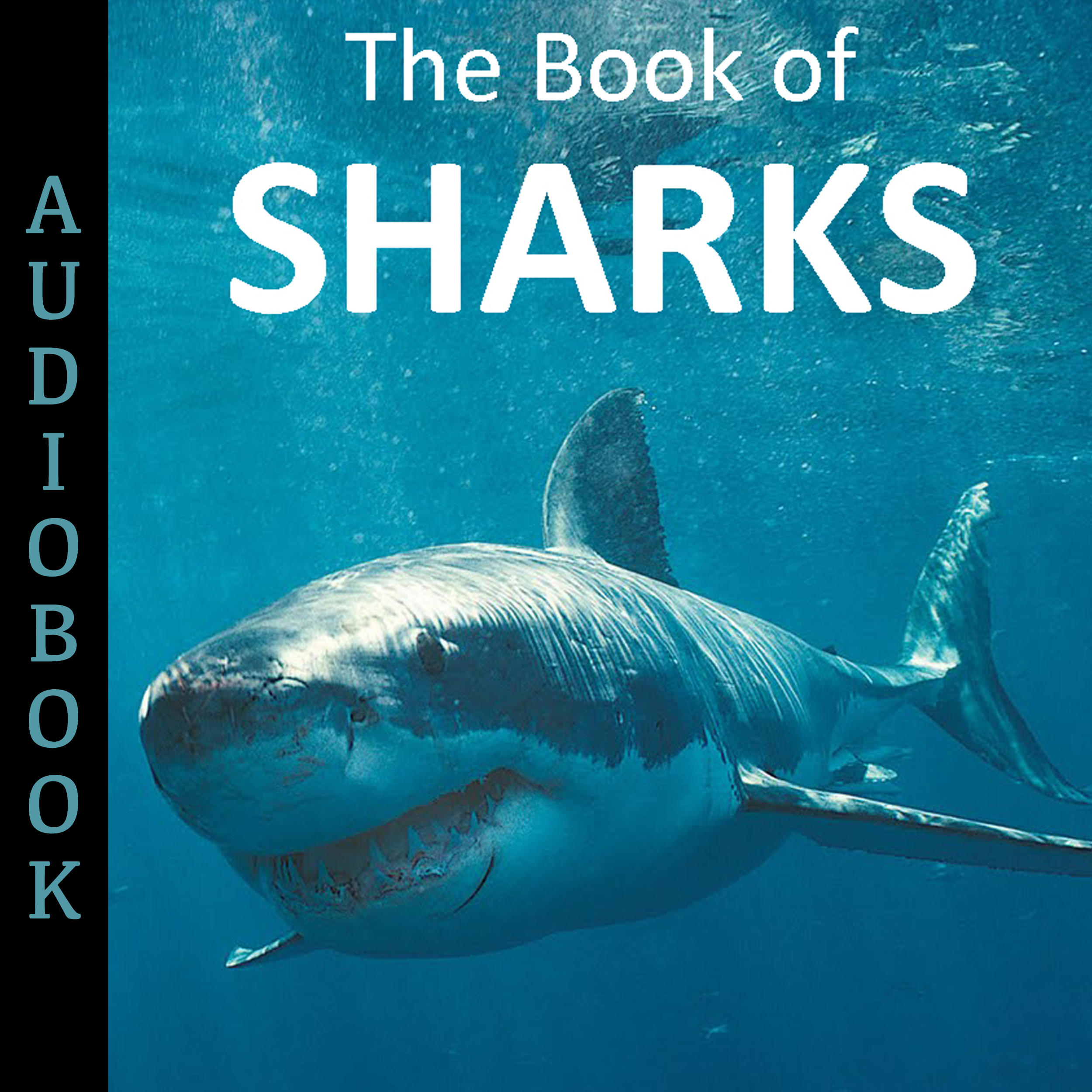 Printable The Book of Sharks Audiobook Cover Art