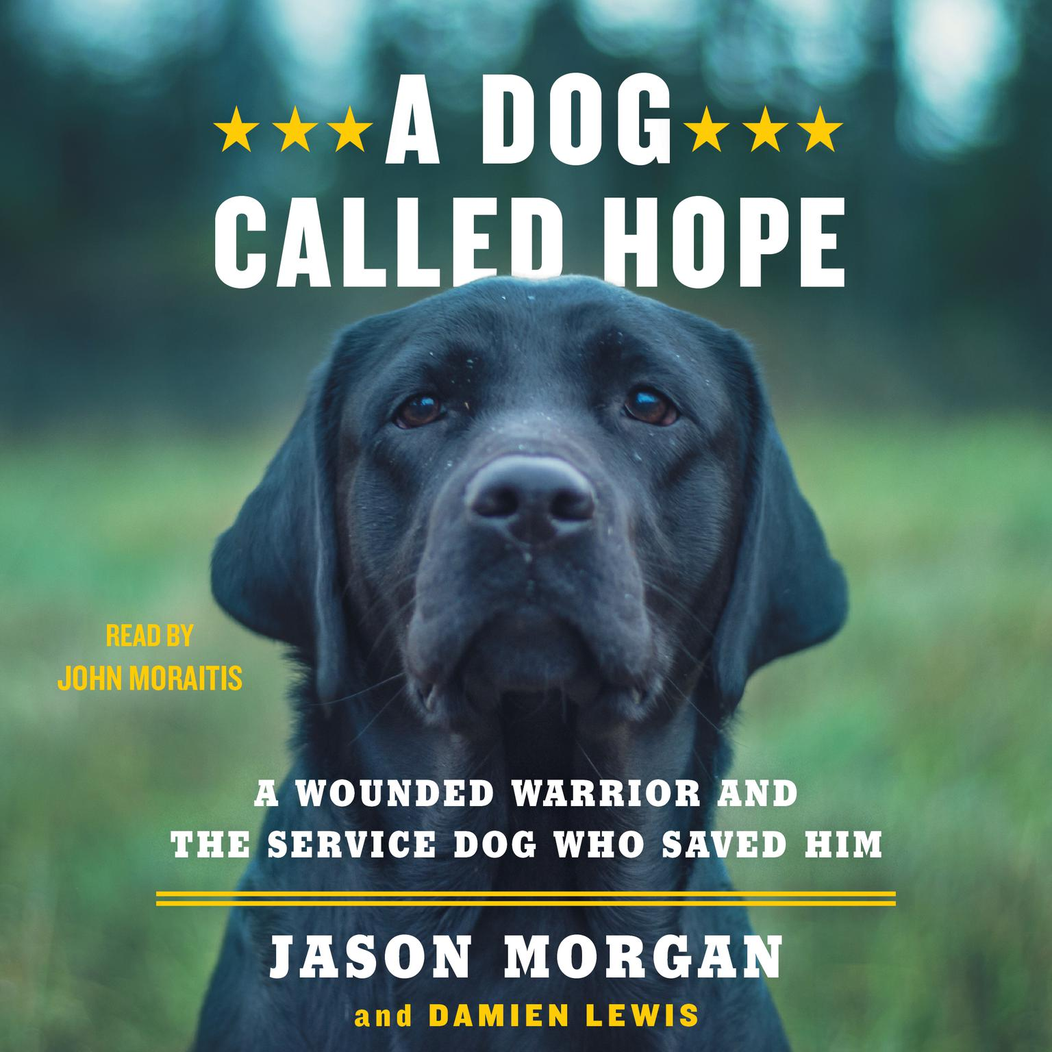 Printable A Dog Called Hope: A Wounded Warrior and the Service Dog Who Saved Him Audiobook Cover Art