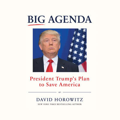 Big Agenda: President Trumps Plan to Save America Audiobook, by David Horowitz