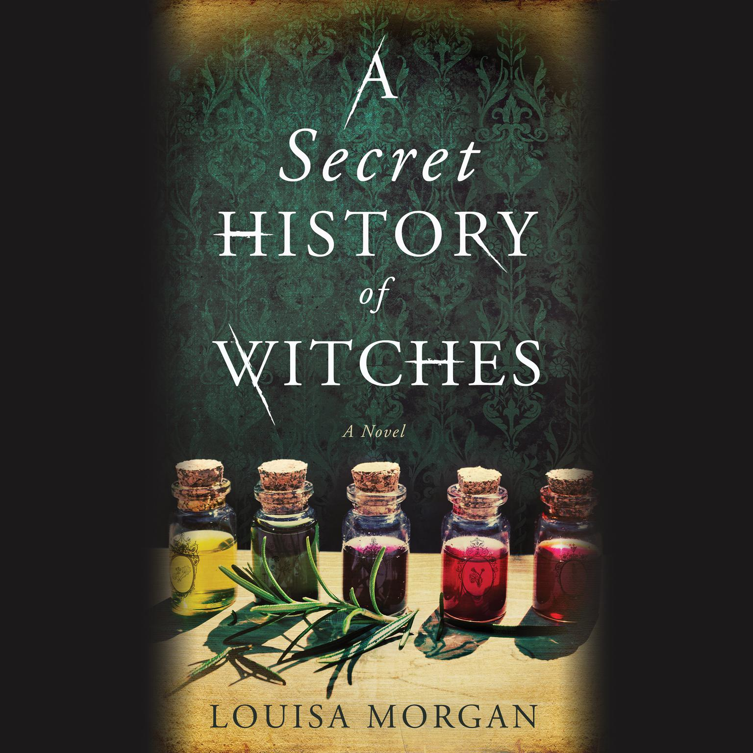 Printable A Secret History of Witches: A Novel Audiobook Cover Art