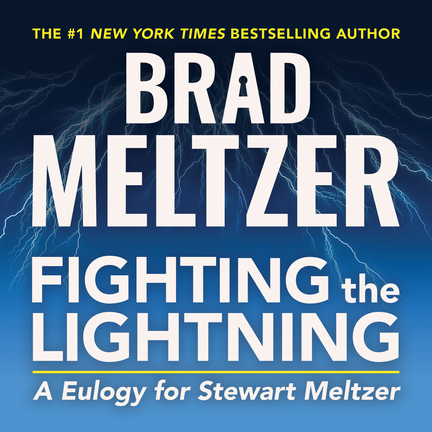 Printable Fighting the Lightning: A Eulogy for Stewart Meltzer Audiobook Cover Art