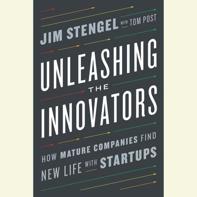 Unleashing the Innovators: How Mature Companies Find New Life with Startups Audiobook, by Jim Stengel