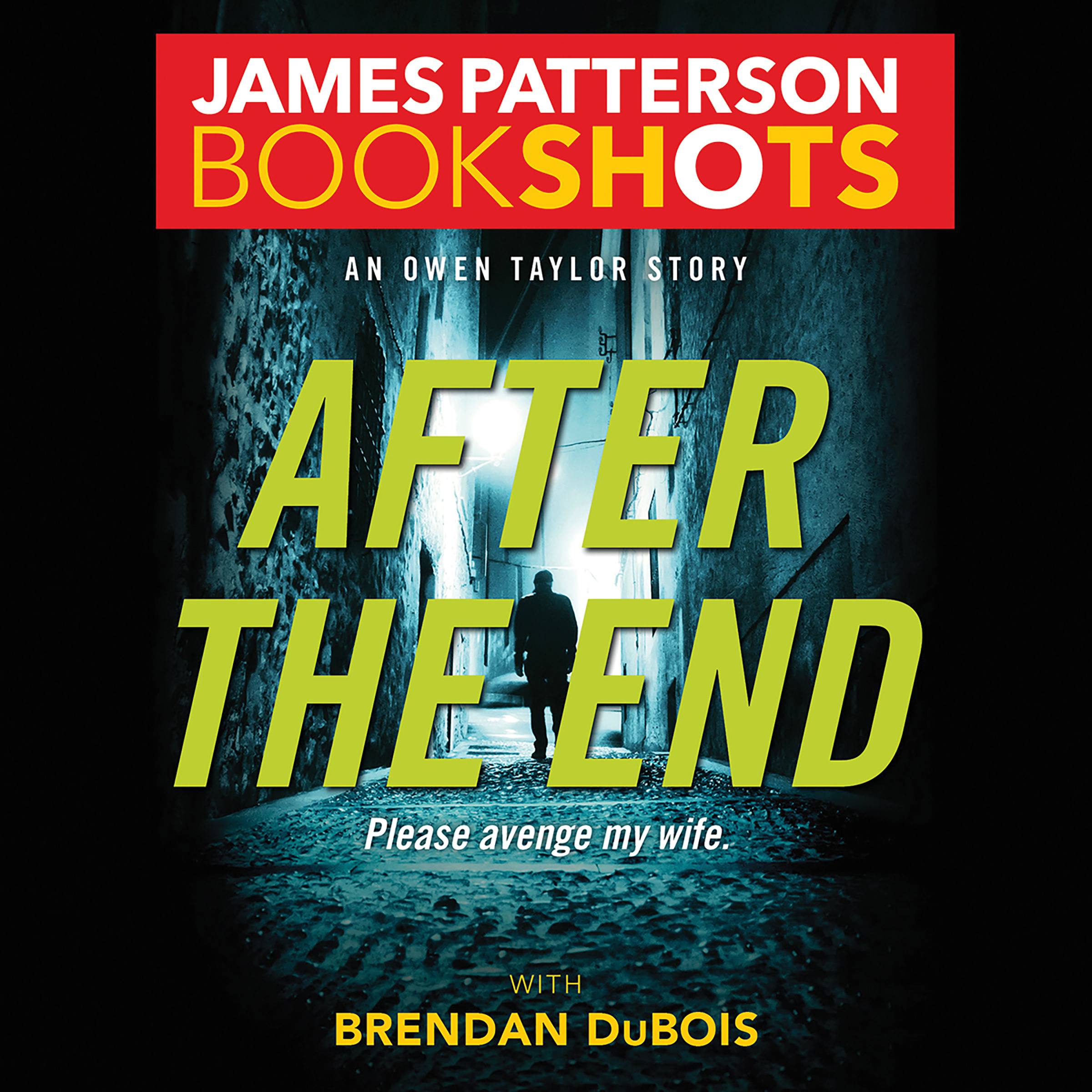 Printable After the End: An Owen Taylor Story Audiobook Cover Art