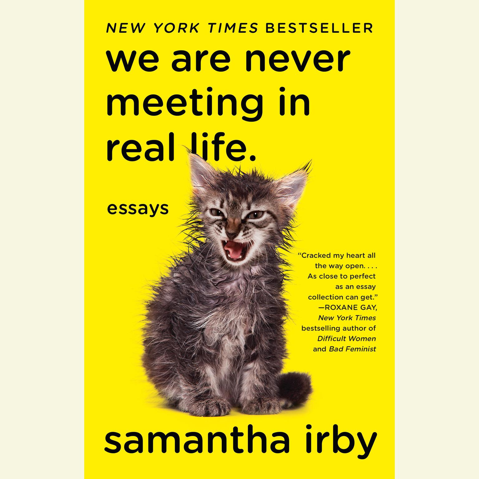 Printable We Are Never Meeting in Real Life: Essays Audiobook Cover Art