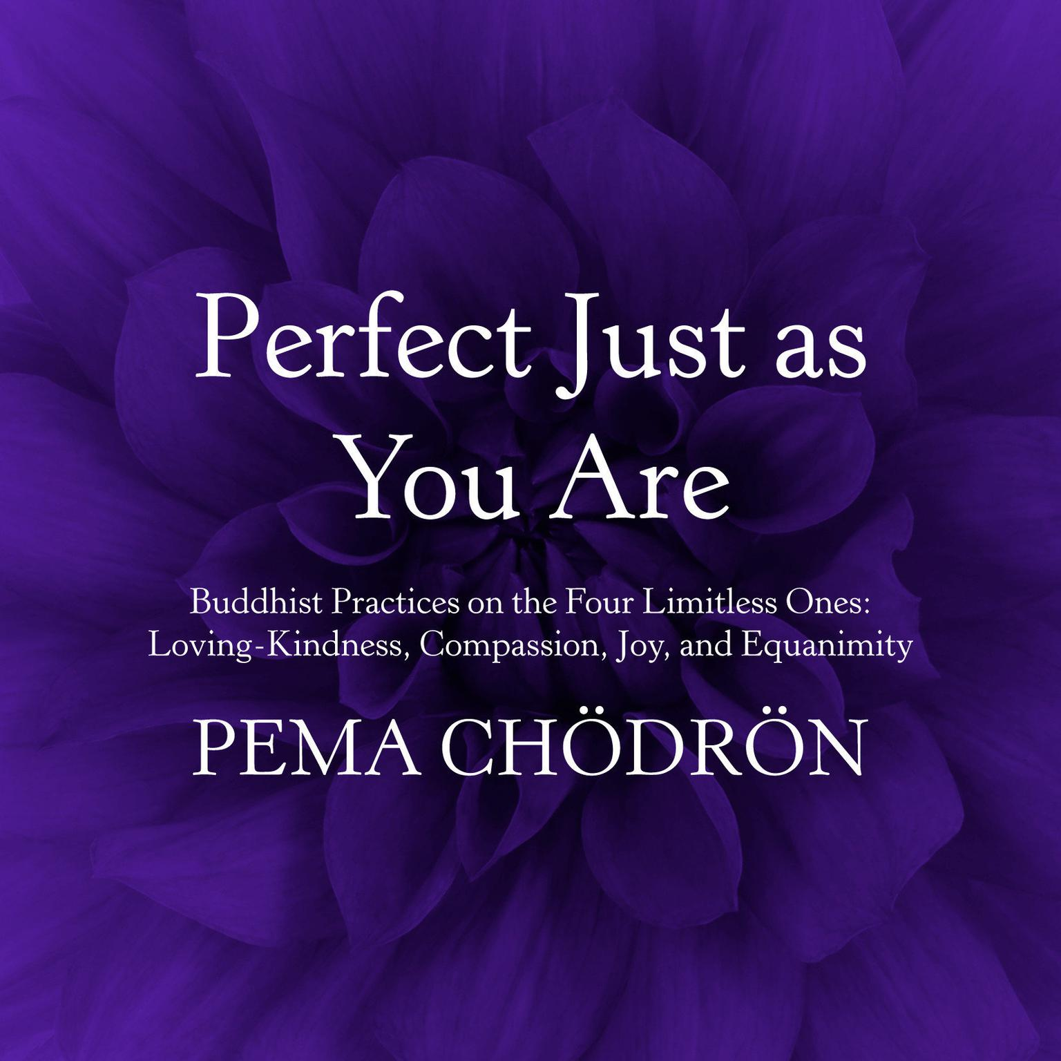 Printable Perfect Just as You Are: Buddhist Practices on the Four Limitless Ones: Loving-Kindness, Compassion, Joy, and Equanimity Audiobook Cover Art