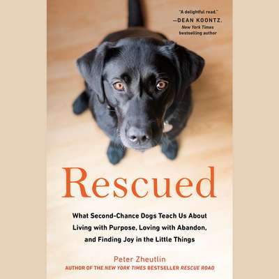 Rescued: What Second-Chance Dogs Teach Us About Living with Purpose, Loving with Abandon, and Finding Joy in the Little Things Audiobook, by Peter Zheutlin