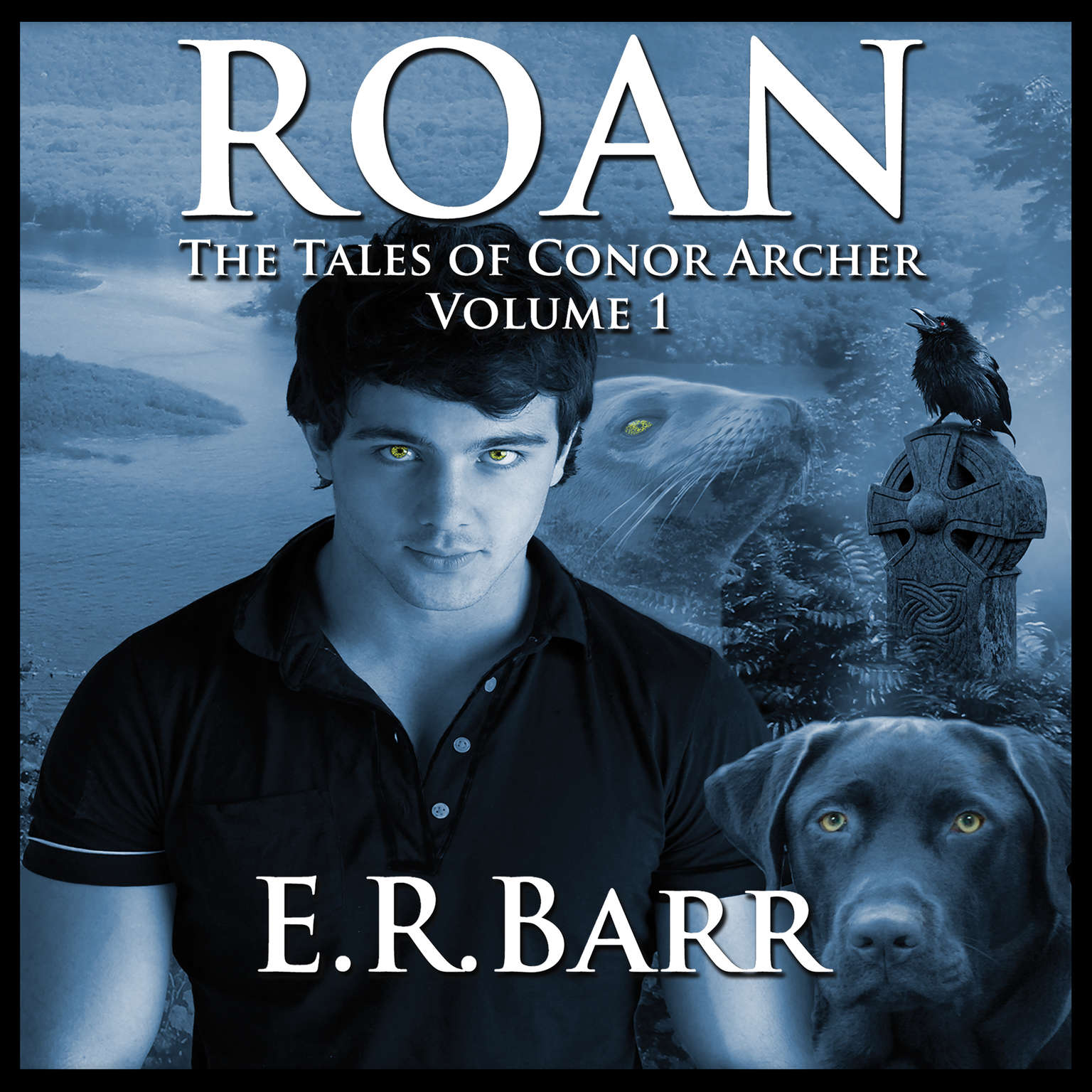 Roan:  The Tales Of Conor Archer Audiobook, by E. R. Barr