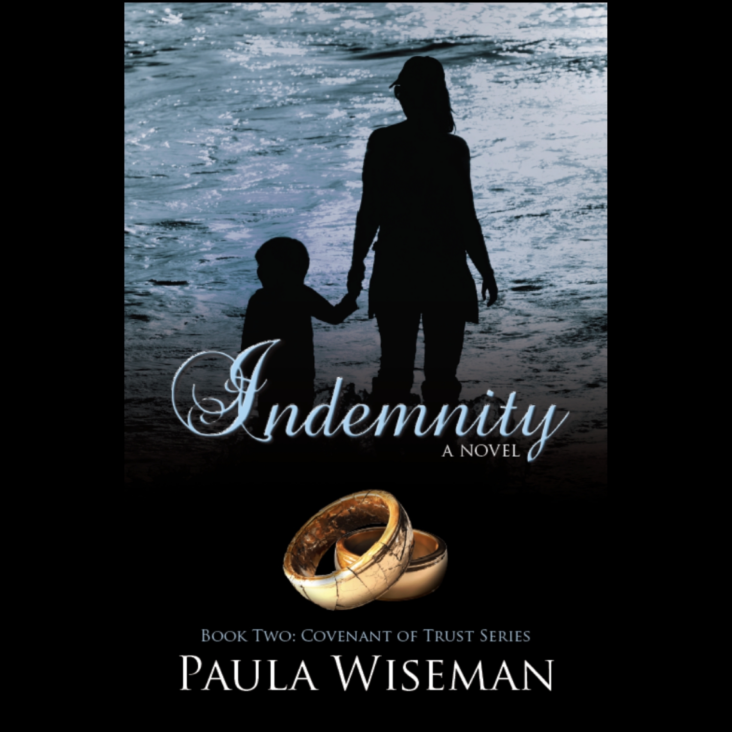 Printable Indemnity Audiobook Cover Art