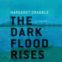 The Dark Flood Rises Audiobook, by Margaret Drabble