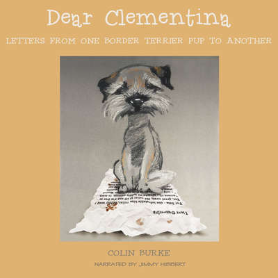 Dear Clementina Audiobook, by Colin Burke