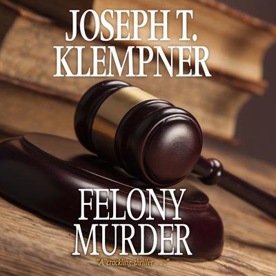 Felony Murder Audiobook, by Joseph T. Klempner