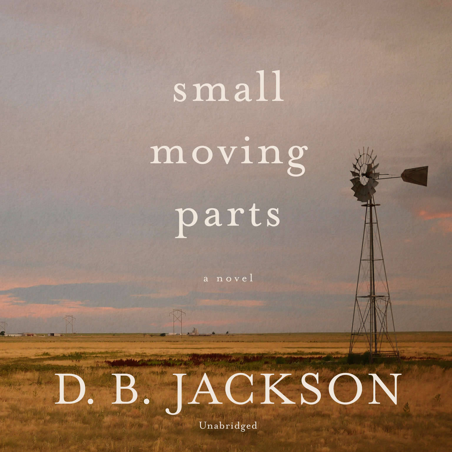 Small Moving Parts Audiobook, by D. B. Jackson