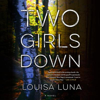 Two Girls Down: A Novel Audiobook, by