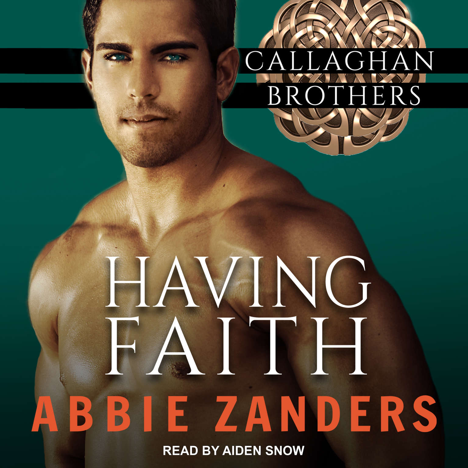 Having Faith Audiobook, by Abbie Zanders