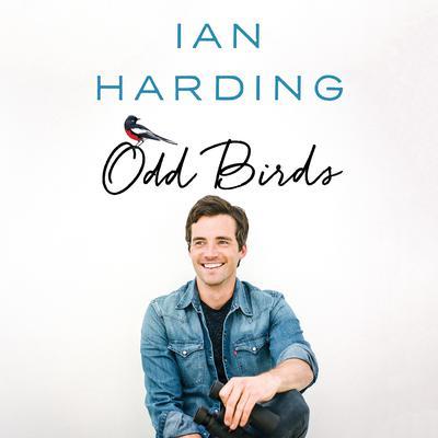 Odd Birds Audiobook, by Ian Harding