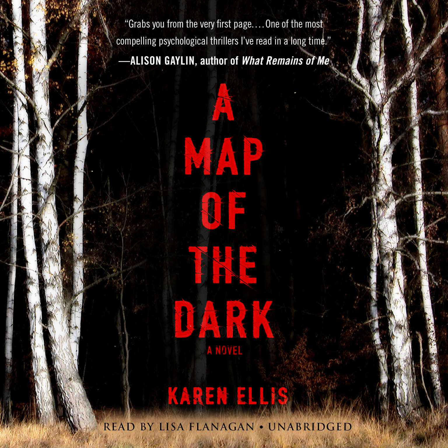 Printable A Map of the Dark Audiobook Cover Art