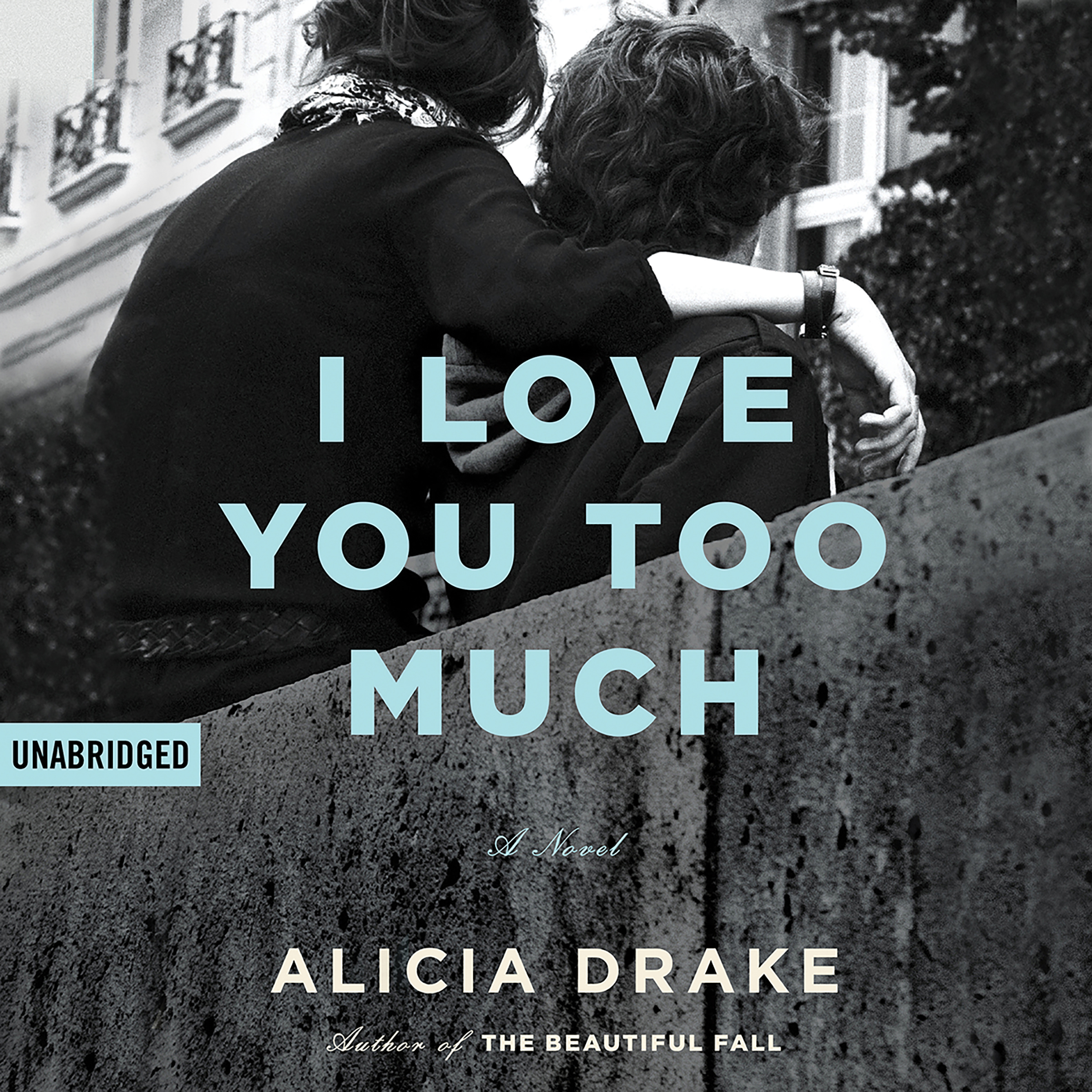 Printable I Love You Too Much Audiobook Cover Art