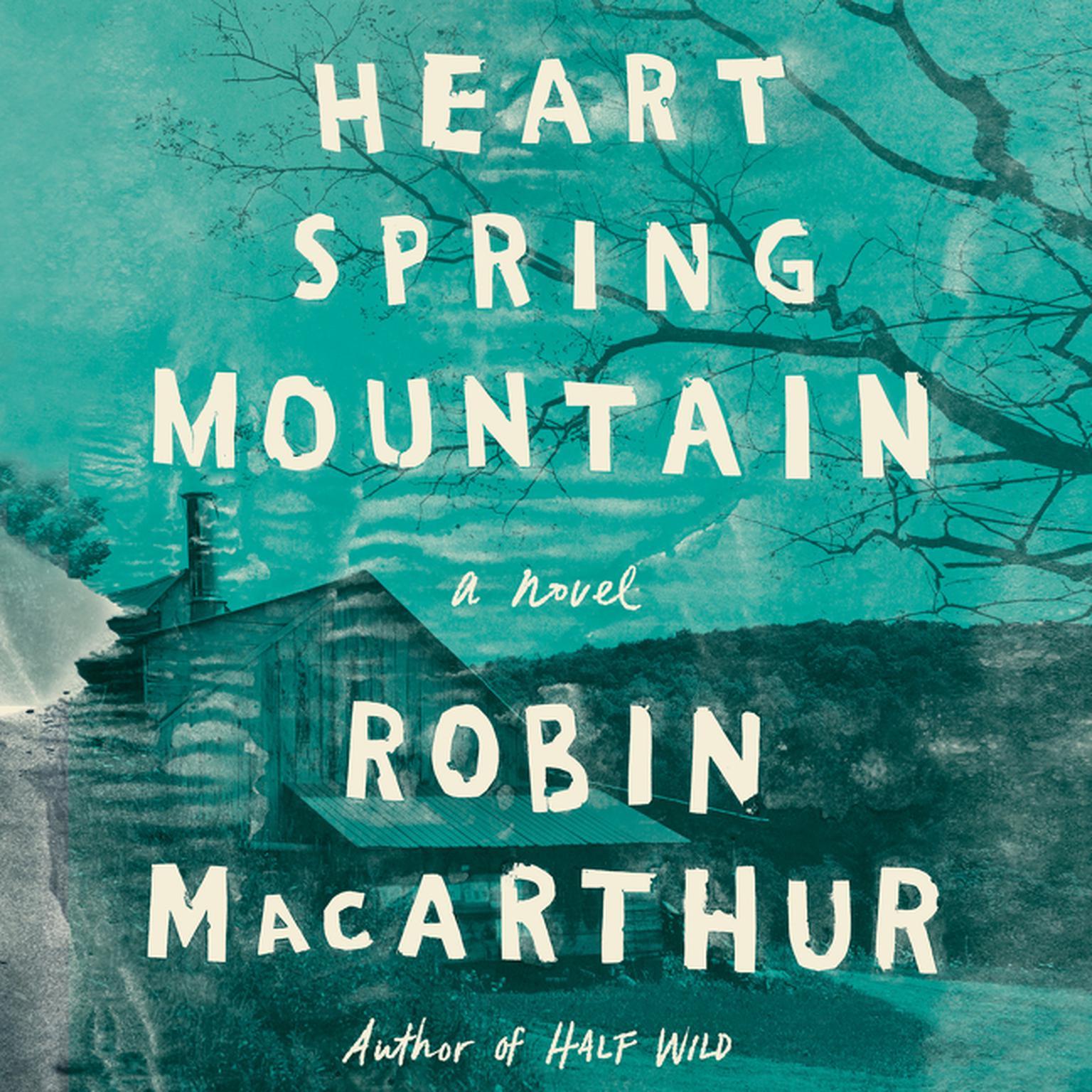 Heart Spring Mountain: A Novel Audiobook, by Robin MacArthur
