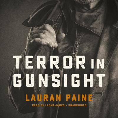 Terror in Gunsight Audiobook, by Lauran Paine