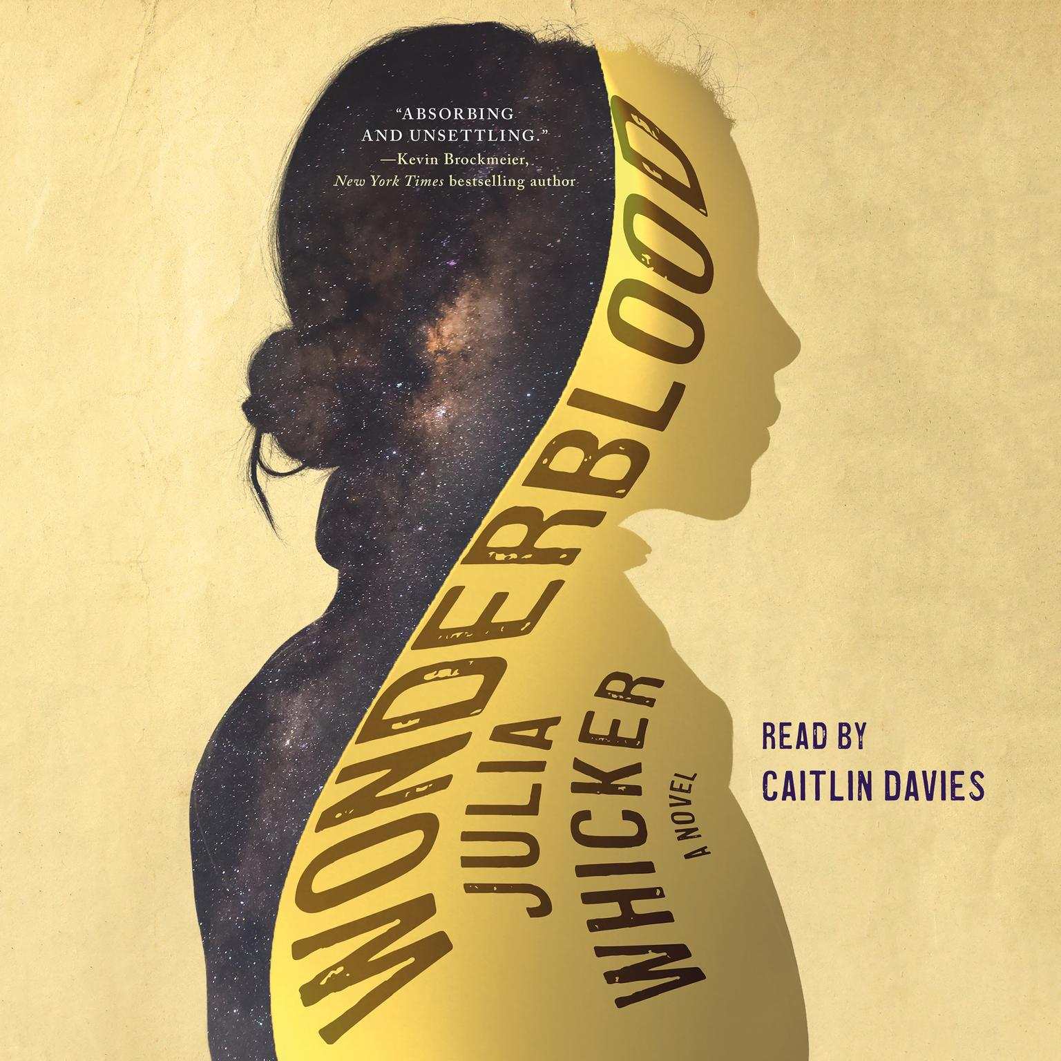 Wonderblood: A Novel Audiobook, by Josh Wilker