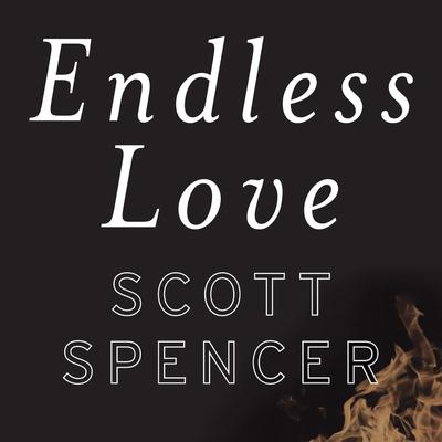 Endless Love: A Novel Audiobook, by Scott Spencer