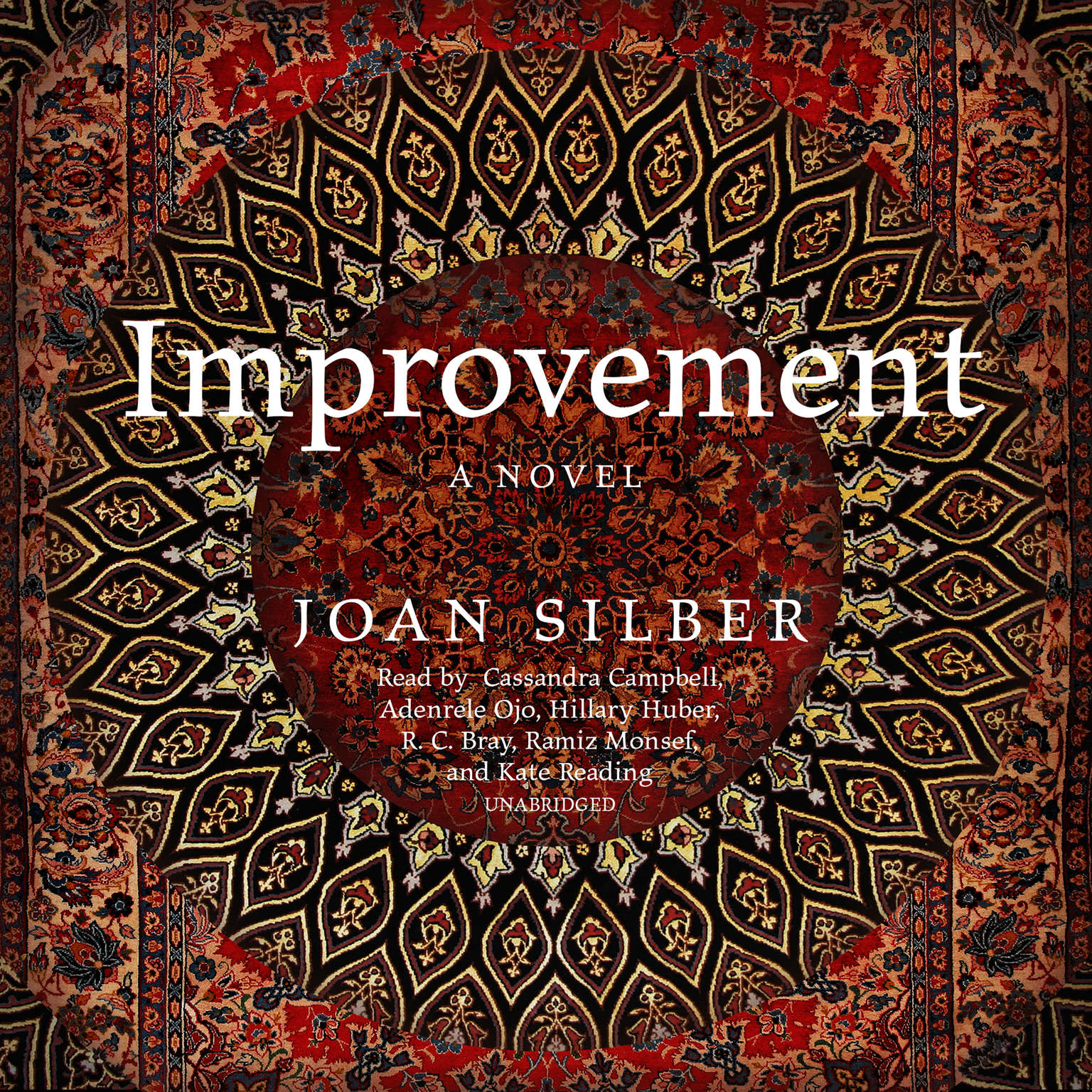 Improvement Audiobook, by Joan Silber