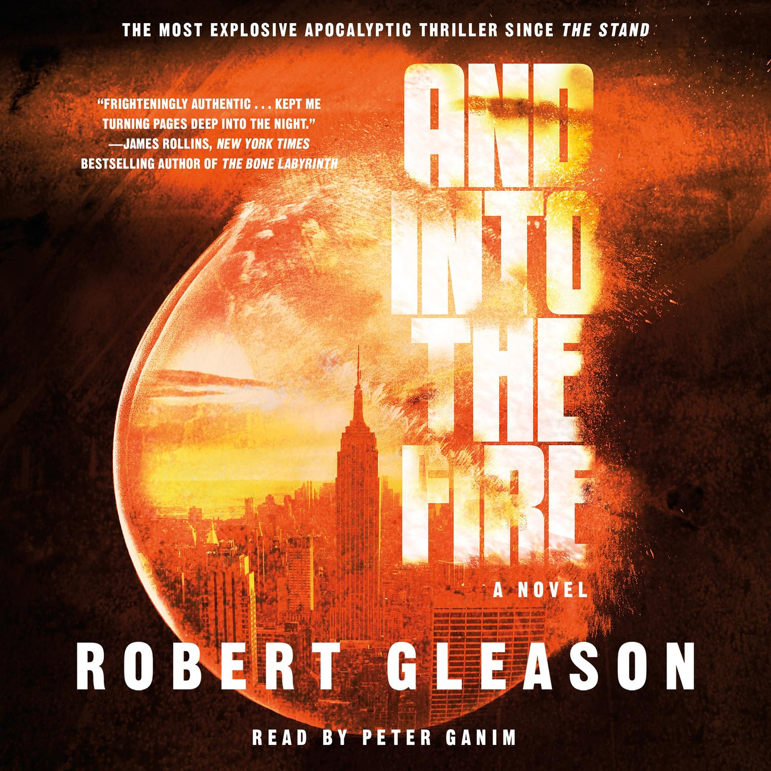 And Into the Fire: A Novel Audiobook, by Robert Gleason