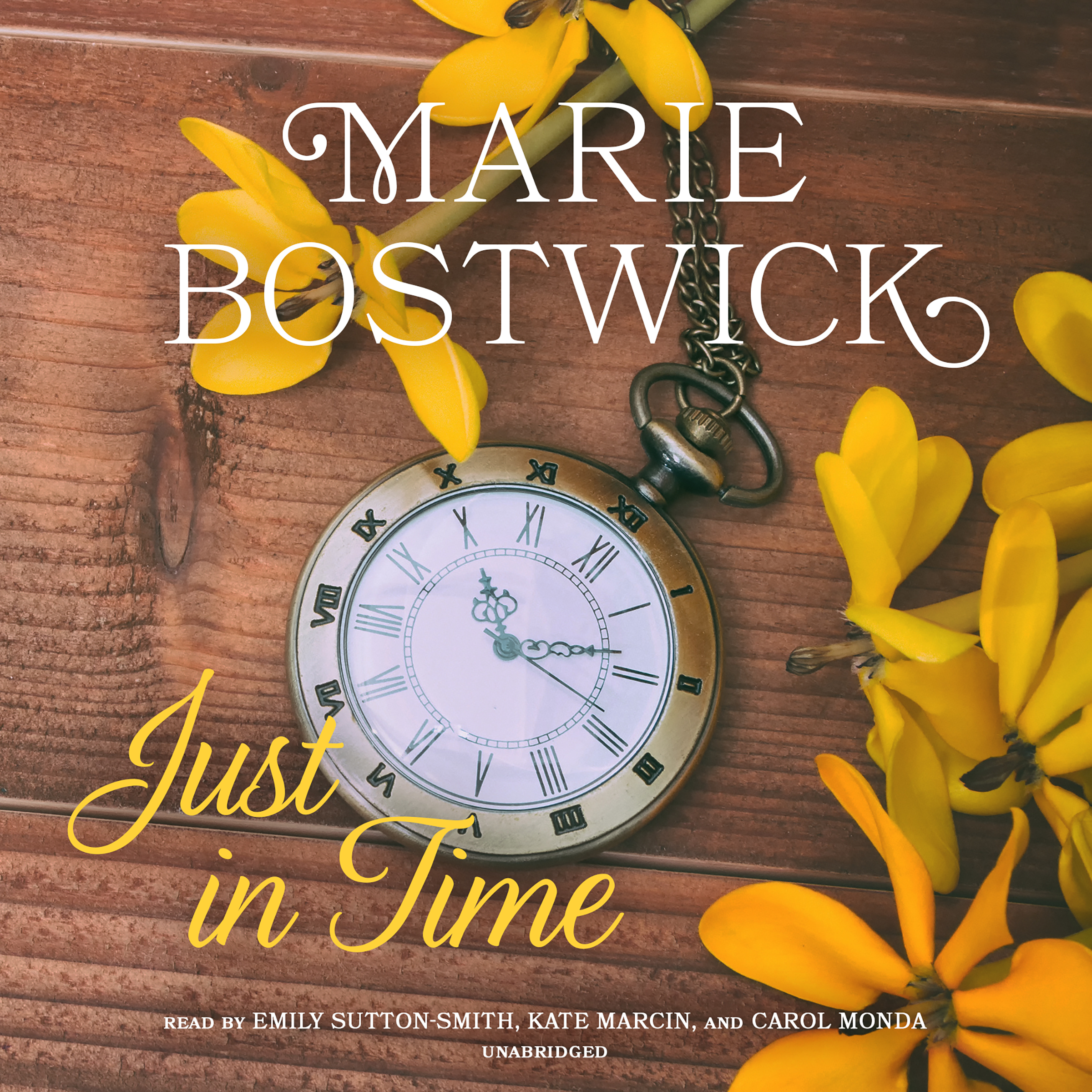 Printable Just in Time Audiobook Cover Art