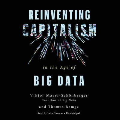 Reinventing Capitalism in the Age of Big Data Audiobook, by Viktor Mayer-Schonberger