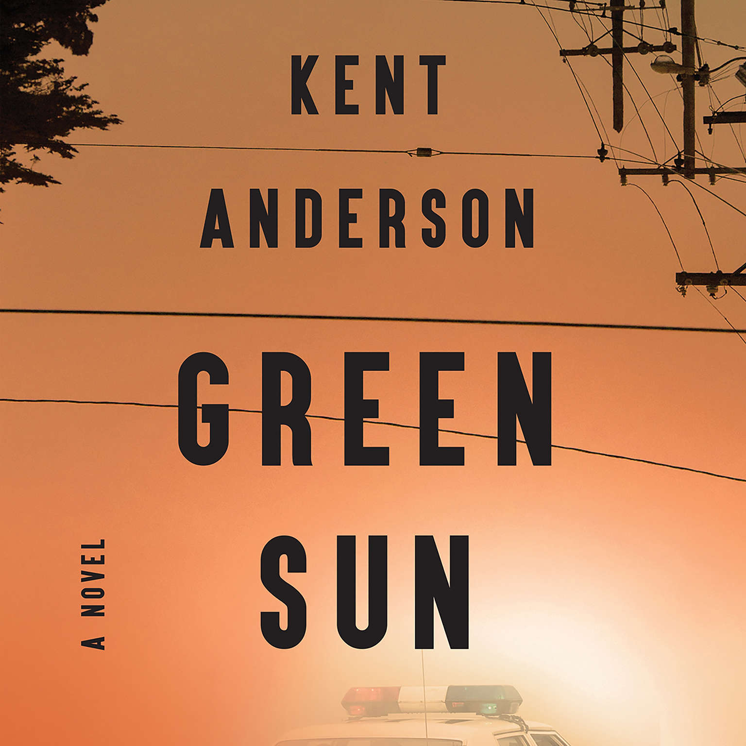 Green Sun Audiobook, by Kent Anderson