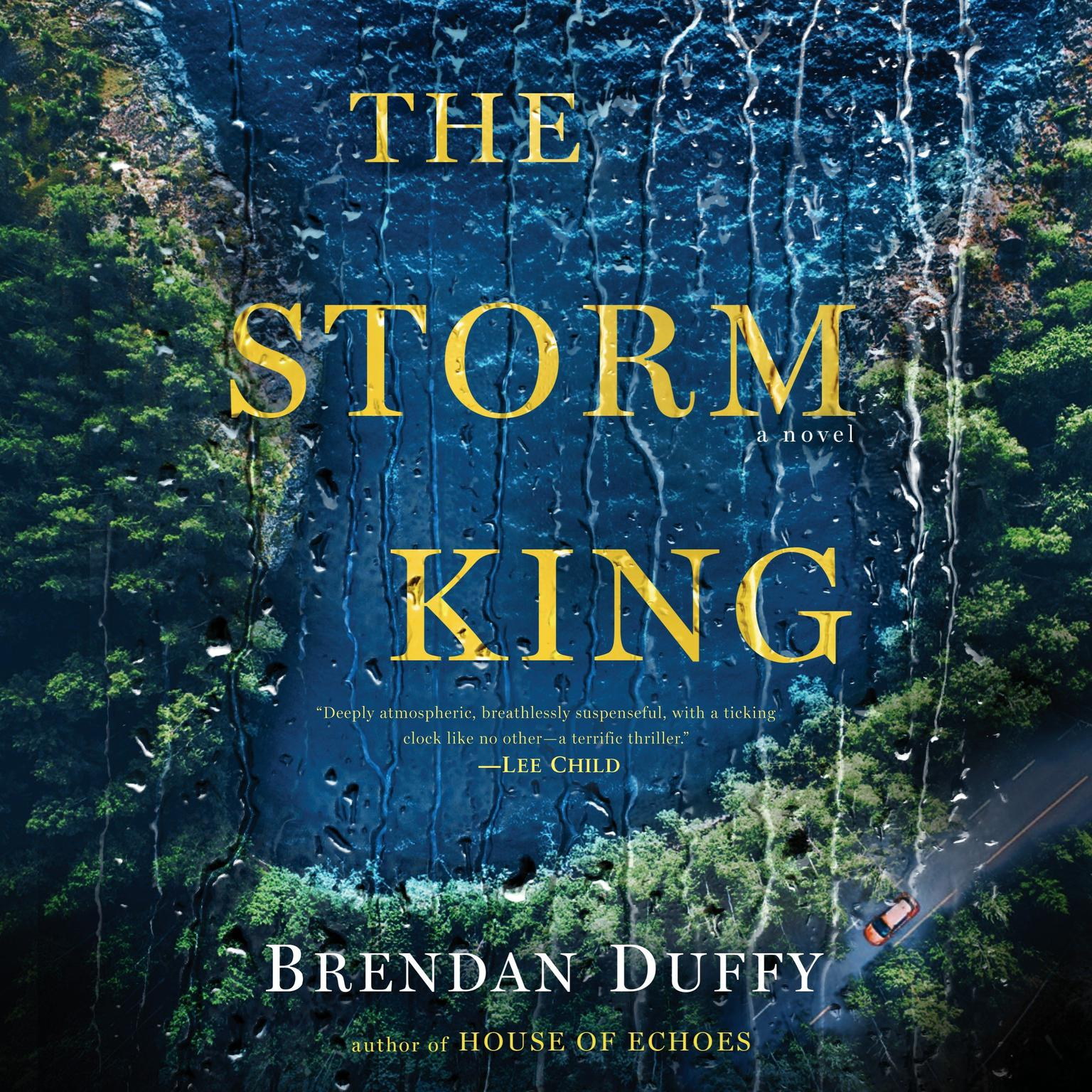 The Storm King: A Novel Audiobook, by Brendan Duffy