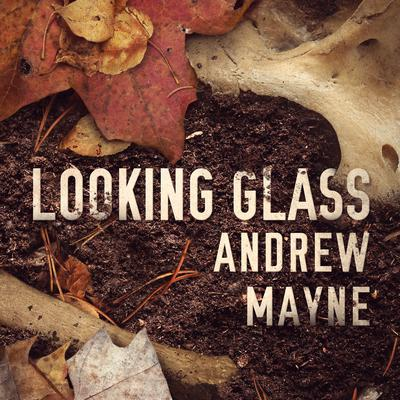 Looking Glass Audiobook, by Andrew Mayne