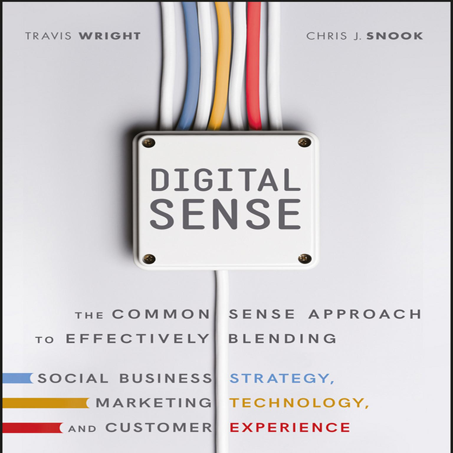 Printable Digital Sense: The Common Sense Approach to Effectively Blending Social Business Strategy, Marketing Technology, and Customer Experience Audiobook Cover Art