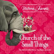 Church of the Small Things: The Million Little Pieces That Make Up a Life Audiobook, by Melanie Shankle