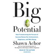 Big Potential: How Transforming the Pursuit of Success Raises Our Achievement, Happiness, and Well-Being Audiobook, by Shawn Achor