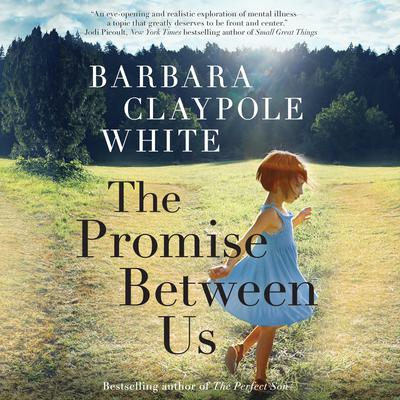 The Promise Between Us Audiobook, by Barbara Claypole White