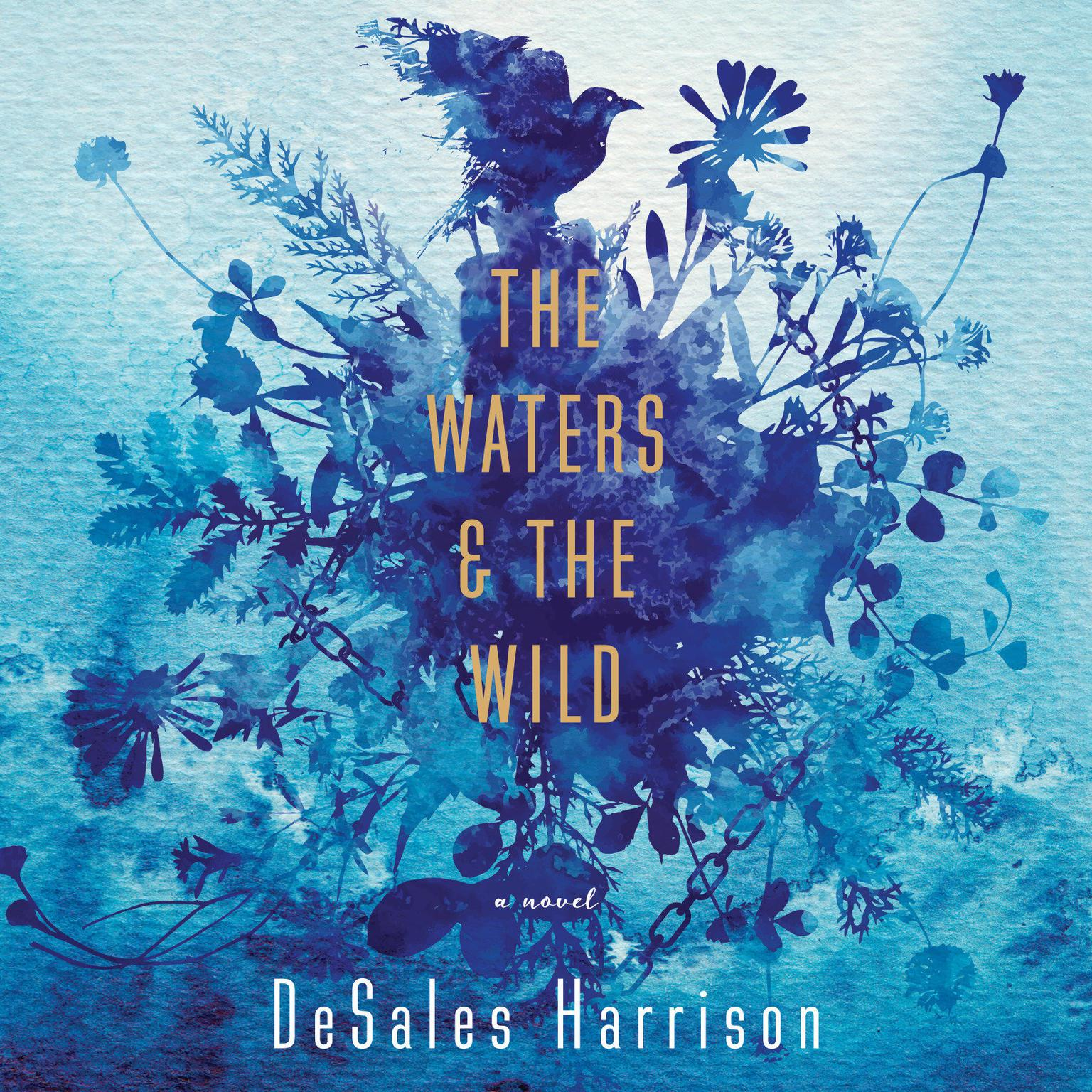 Printable The Waters & The Wild: A Novel Audiobook Cover Art