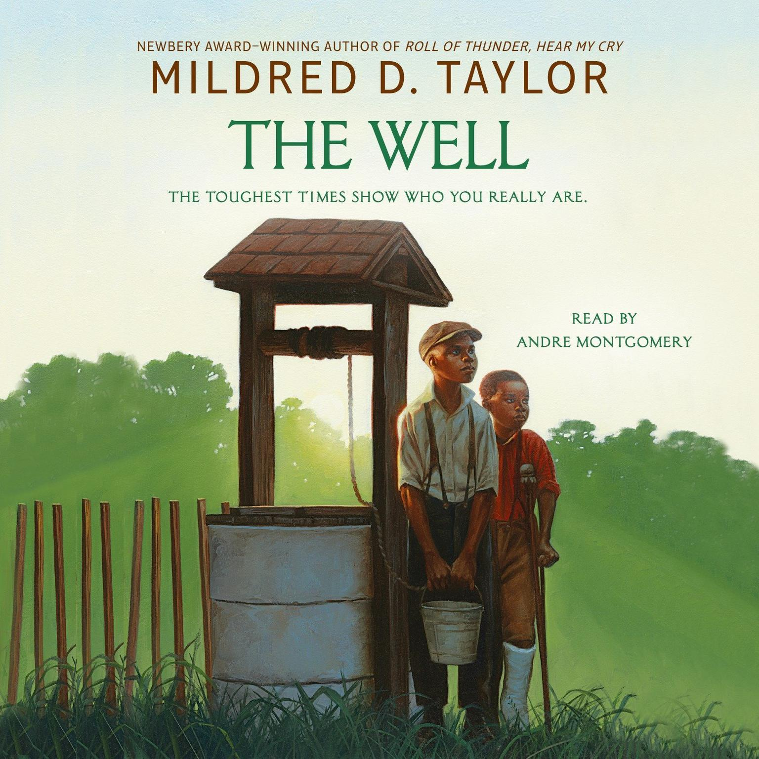 Printable The Well Audiobook Cover Art