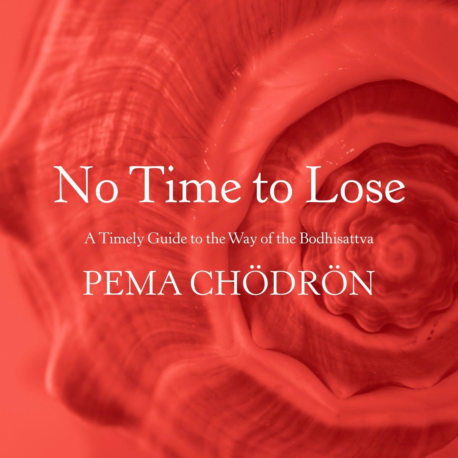 No Time to Lose: A Timely Guide to the Way of the Bodhisattva Audiobook, by Pema Chödrön
