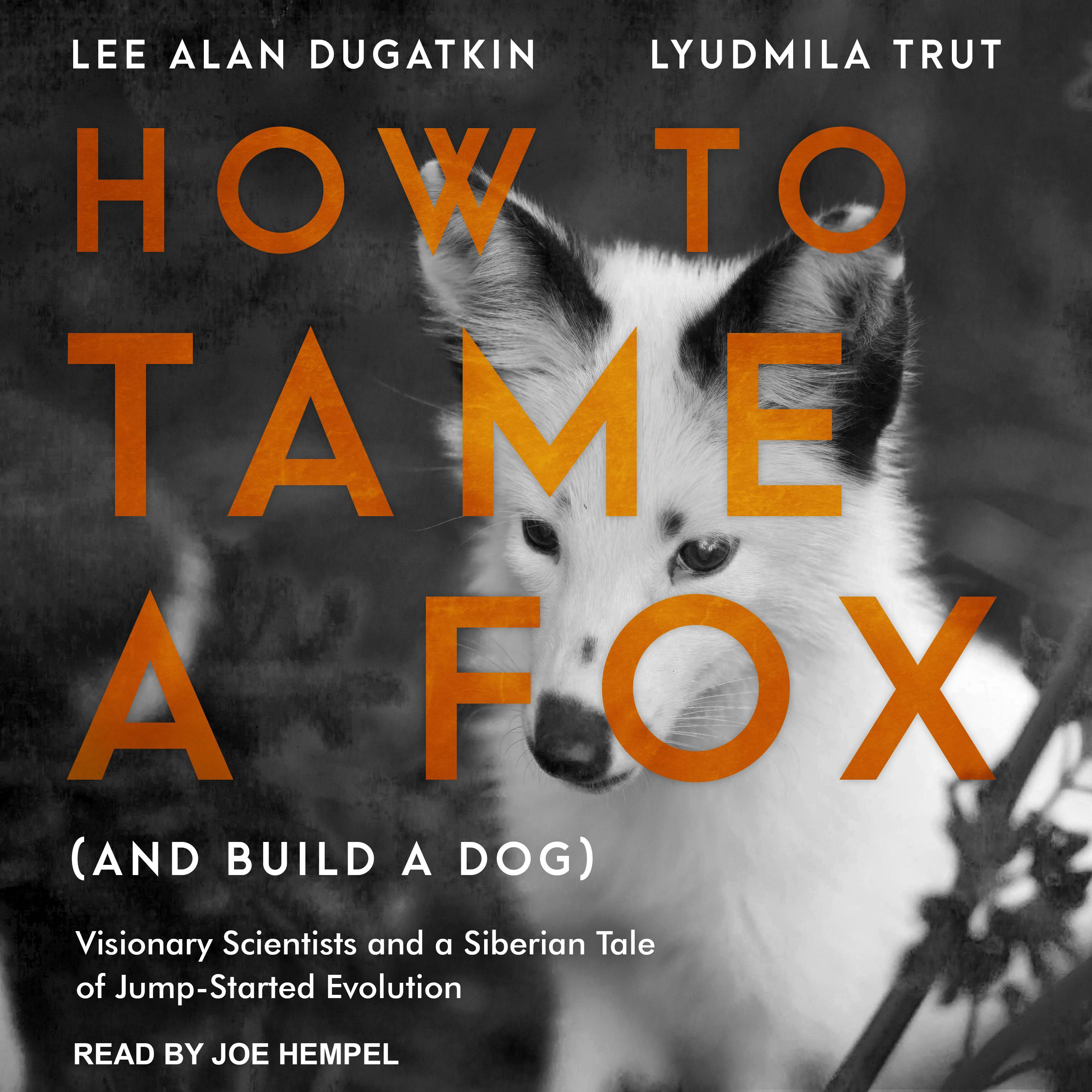 Printable How to Tame a Fox (and Build a Dog): Visionary Scientists and a Siberian Tale of Jump-Started Evolution Audiobook Cover Art