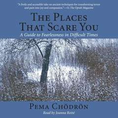 The Places That Scare You: A Guide to Fearlessness in Difficult Times Audiobook, by Pema Chödrön
