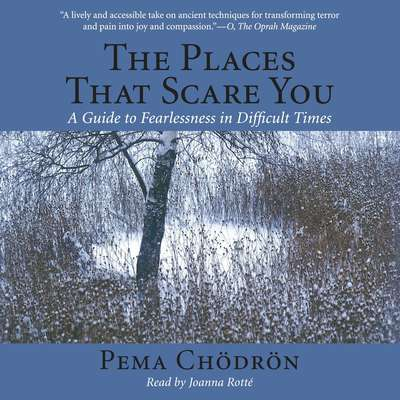 The Places That Scare You: A Guide to Fearlessness in Difficult Times Audiobook, by