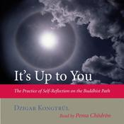 Its Up to You: The Practice of Self-Reflection on the Buddhist Path Audiobook, by Dzigar Kongtrül