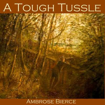 A Tough Tussle Audiobook, by Ambrose Bierce