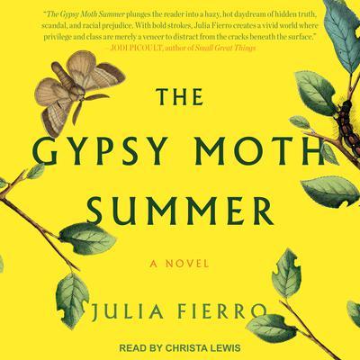 The Gypsy Moth Summer: A Novel Audiobook, by Julia Fierro