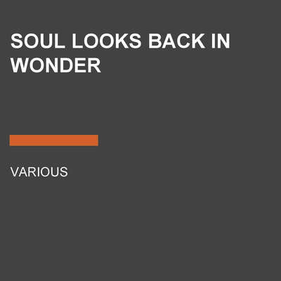 Soul Looks Back in Wonder Audiobook, by various authors